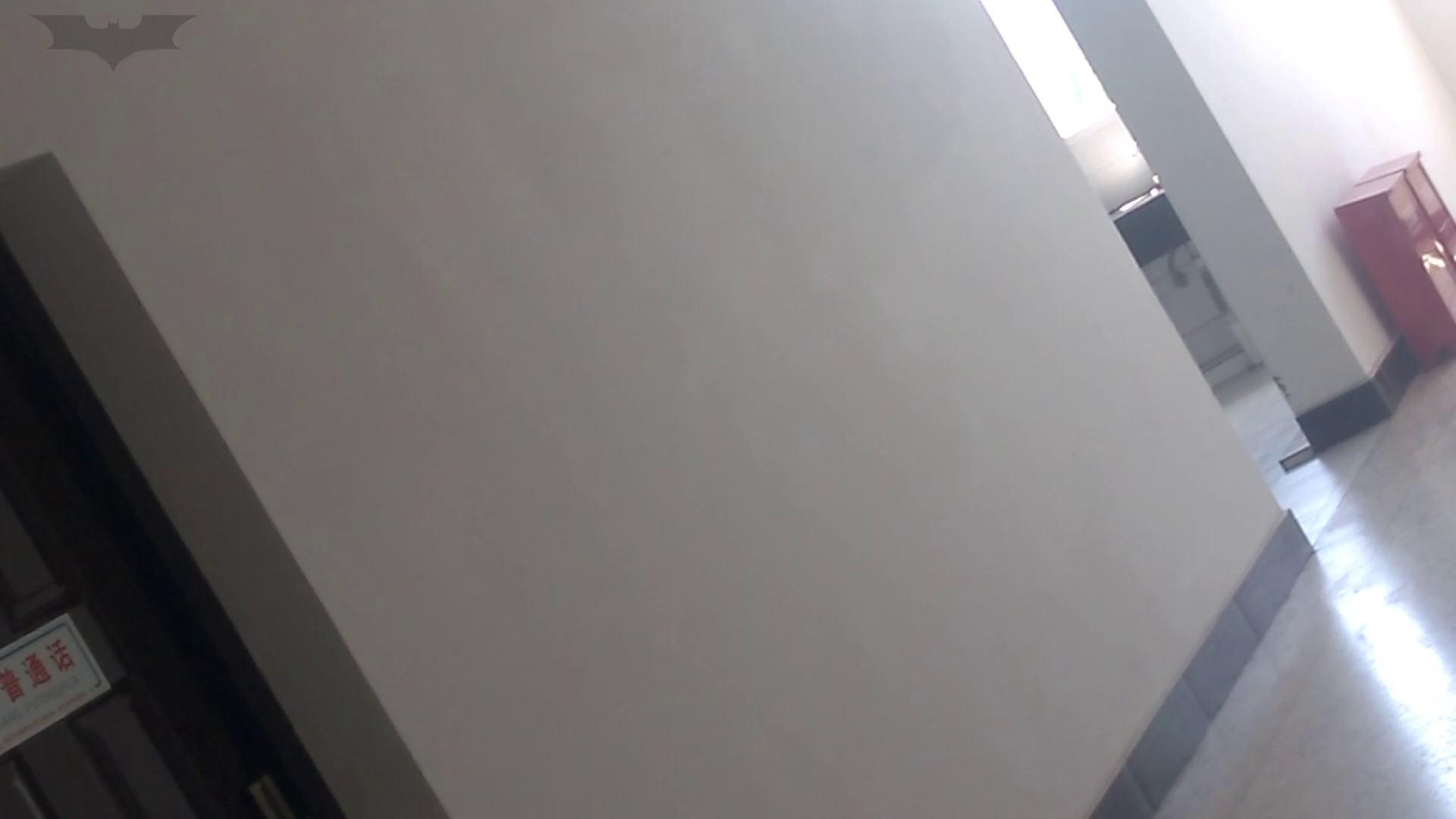 JD盗撮 美女の洗面所の秘密 Vol.10 特撮トイレ | 0  101画像 82