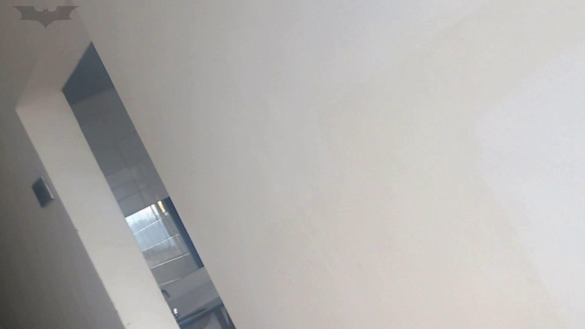 JD盗撮 美女の洗面所の秘密 Vol.10 特撮トイレ | 0  101画像 92
