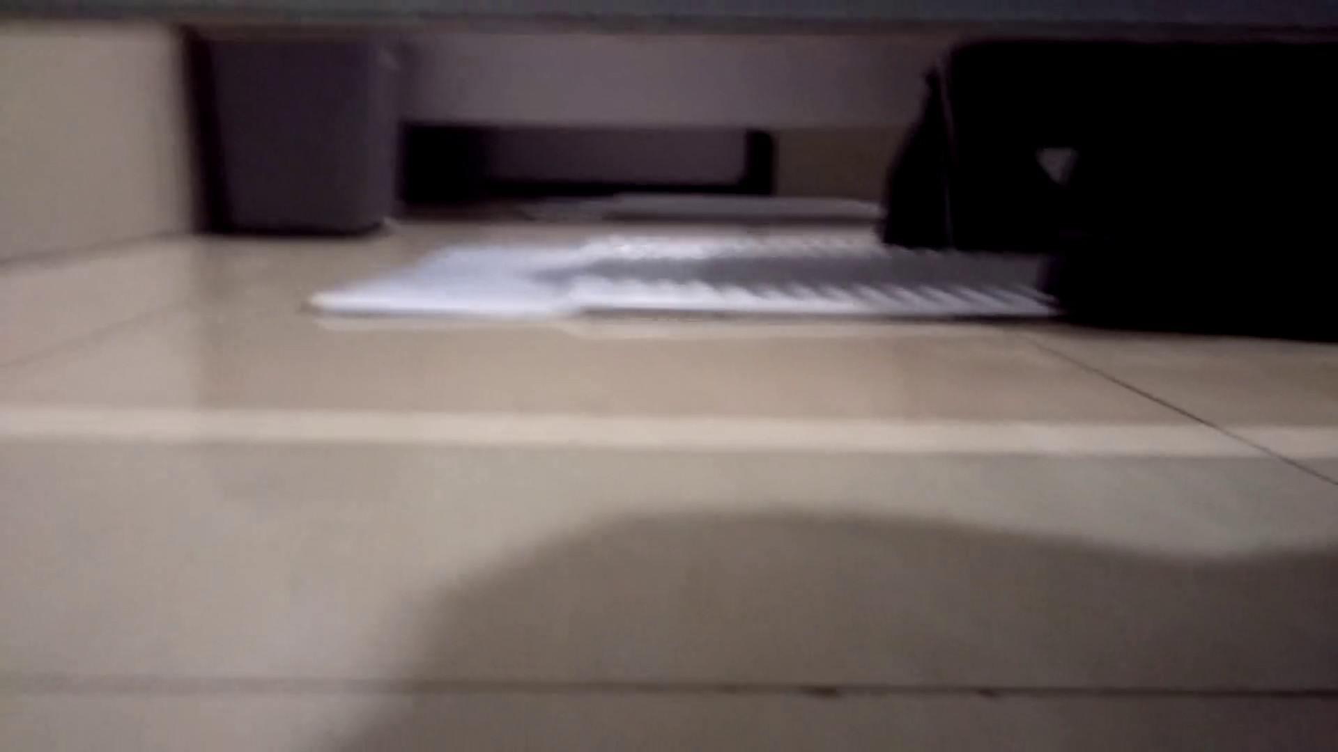 芸術大学ガチ潜入盗撮 JD盗撮 美女の洗面所の秘密 Vol.102 0   0  90画像 38