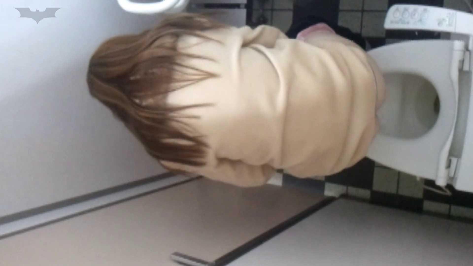化粧室絵巻 駅舎編 VOL.17 後ろ姿美人のおねぇたん!! 0 | 美人  108画像 72