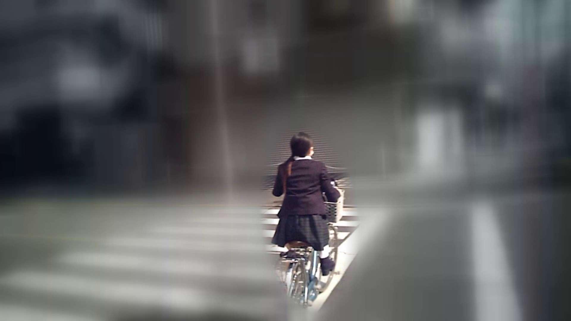 自転車パンチラ Vol.04 0   0  89画像 42