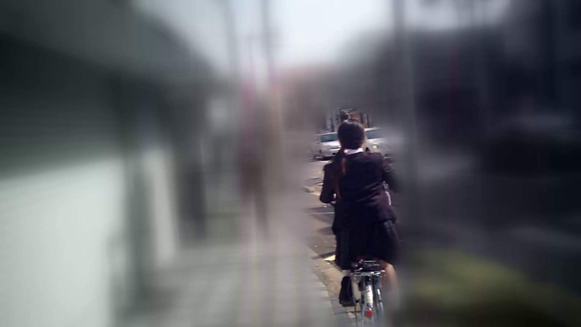 自転車パンチラ Vol.04 0   0  89画像 43