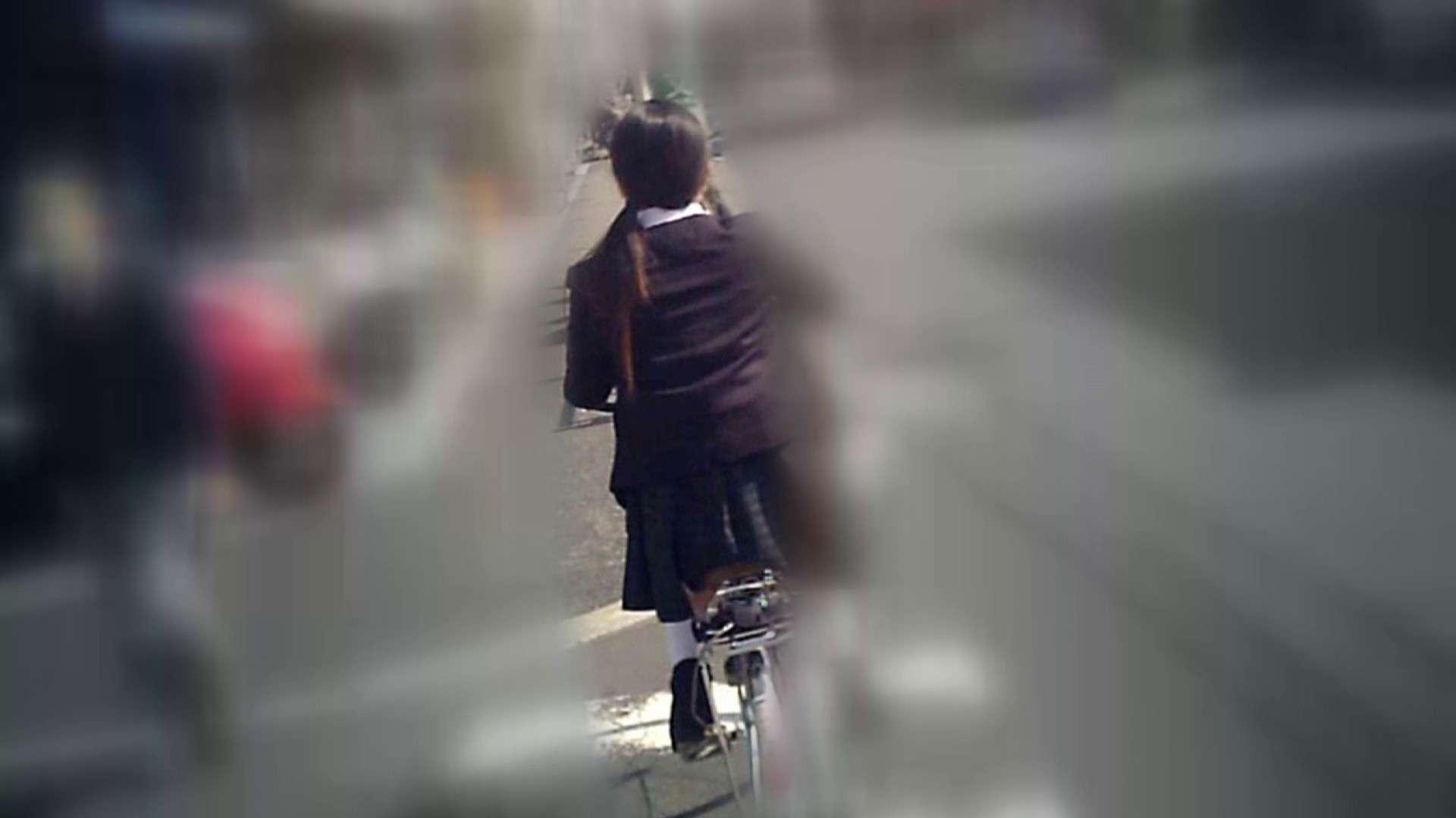 自転車パンチラ Vol.04 0   0  89画像 46
