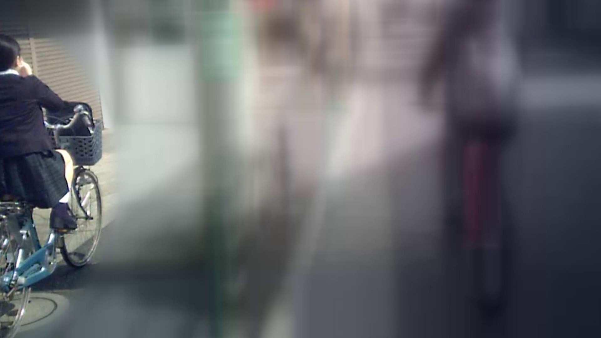 自転車パンチラ Vol.04 0   0  89画像 49