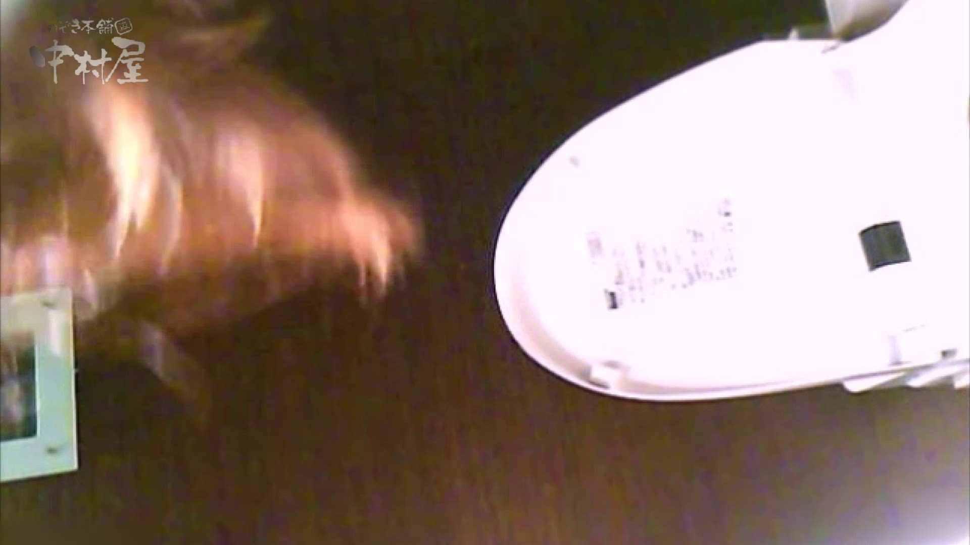 女子トイレ盗撮~某ファミレス編~vol.39 女子トイレ | 潜入画像  109画像 60