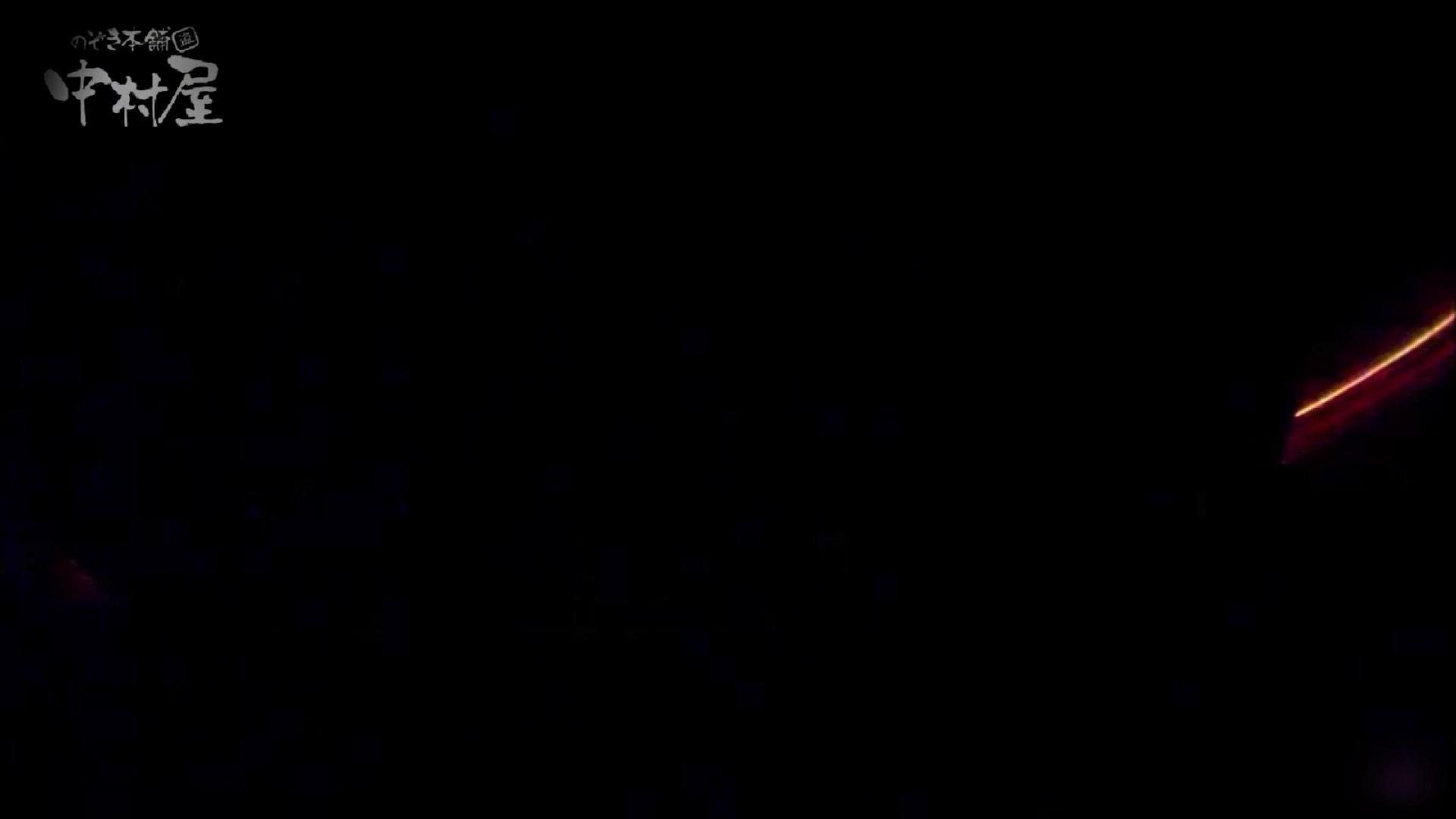 女子トイレ盗撮~某ファミレス編~vol.39 女子トイレ | 潜入画像  109画像 109