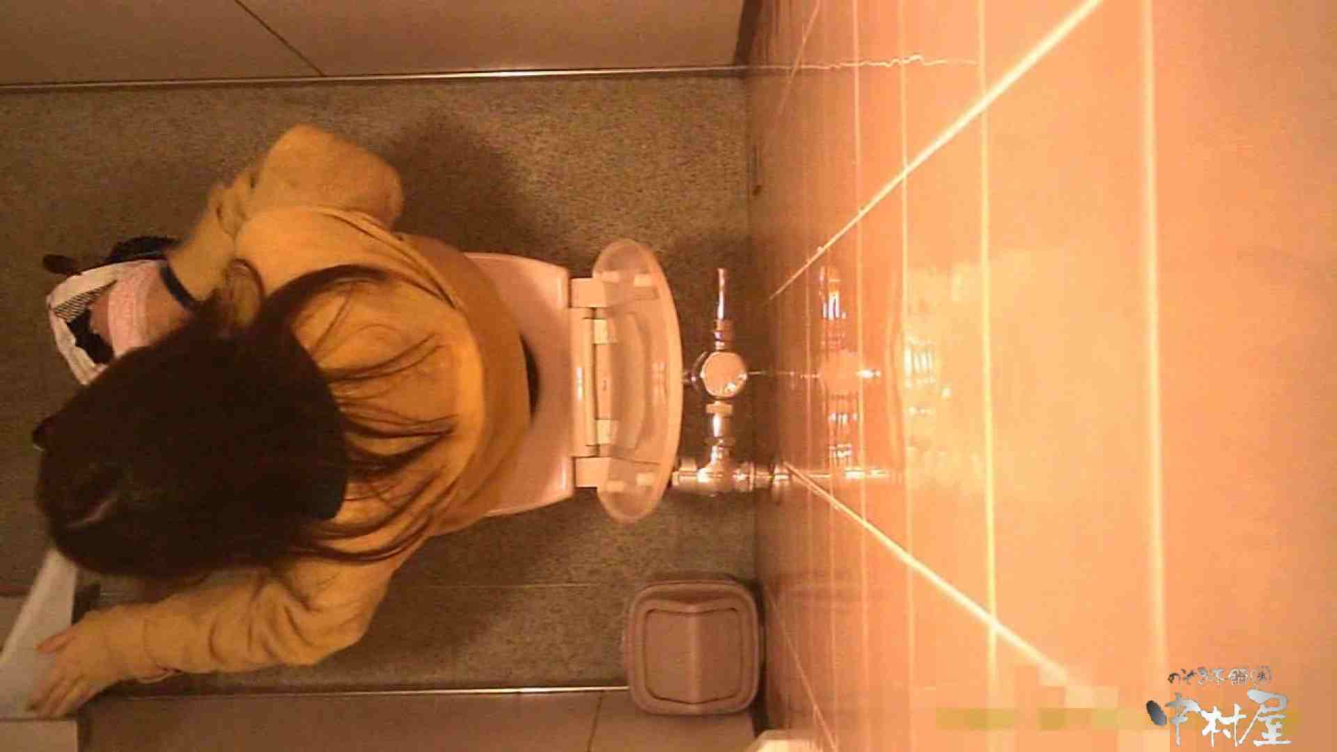 初盗撮!女盗撮師カレンさんの 潜入!女子トイレ盗撮!Vol.5 美女 | 女子トイレ  99画像 13