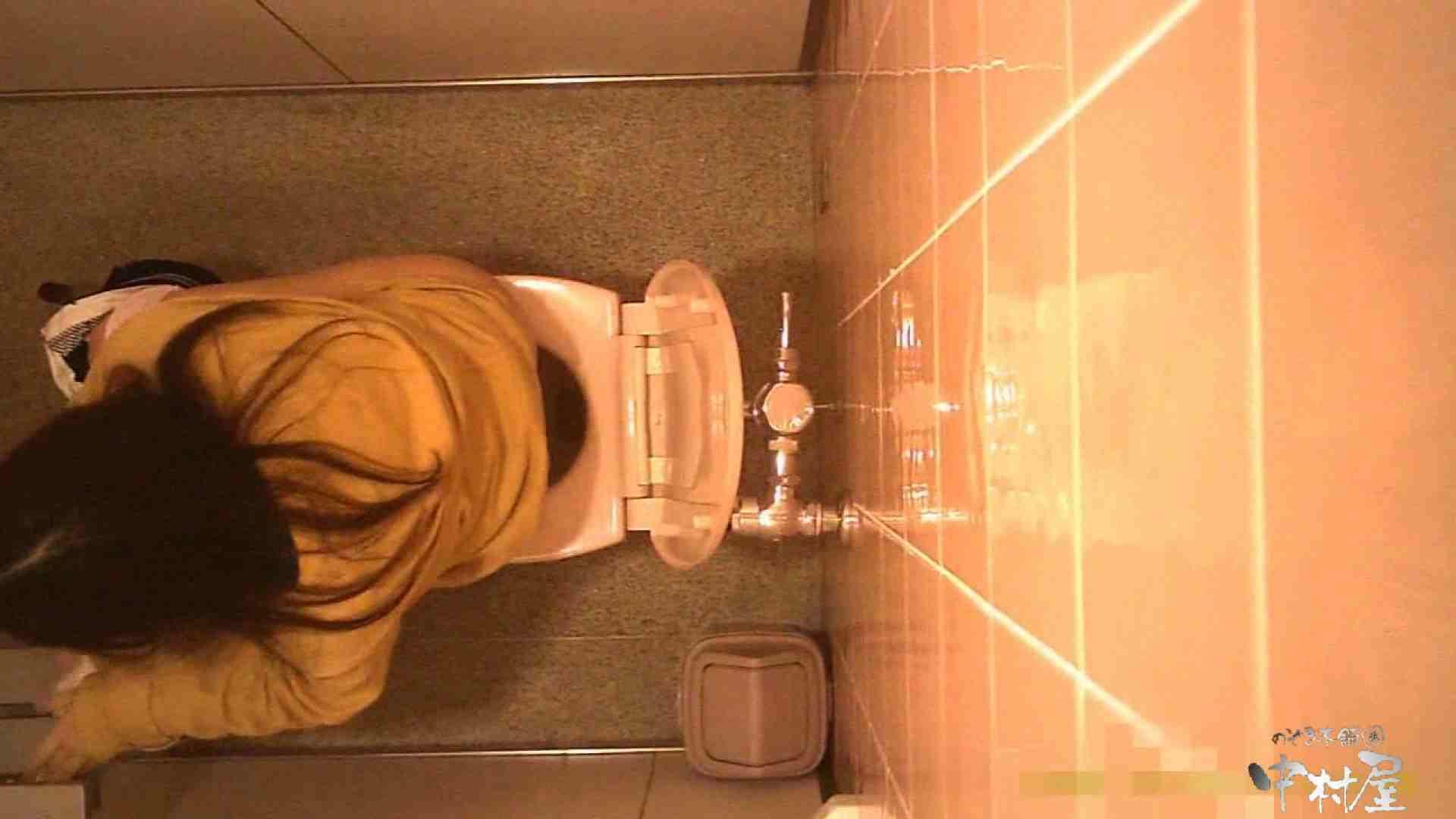 初盗撮!女盗撮師カレンさんの 潜入!女子トイレ盗撮!Vol.5 美女 | 女子トイレ  99画像 14