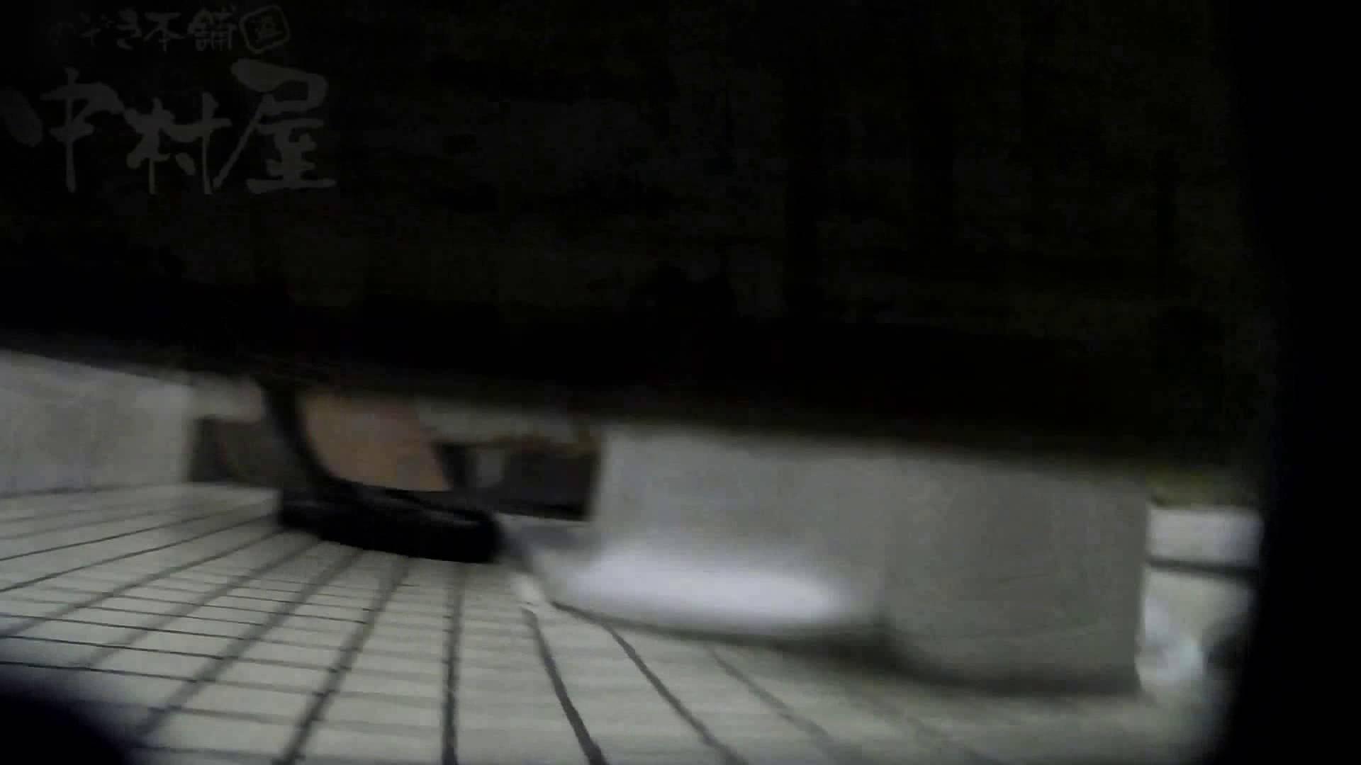 美しい日本の未来 No.02 乙女   女子トイレ  61画像 29