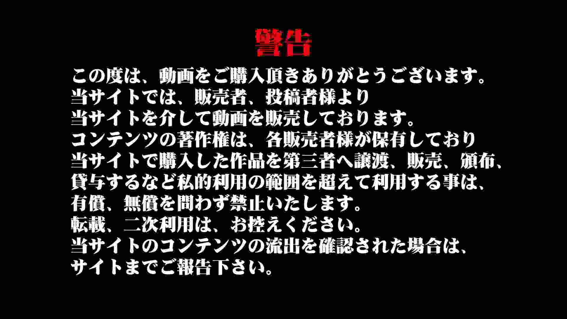 雅さんの独断と偏見で集めた動画集 厠編vol.01 盗撮特集 | おまんこ  85画像 1