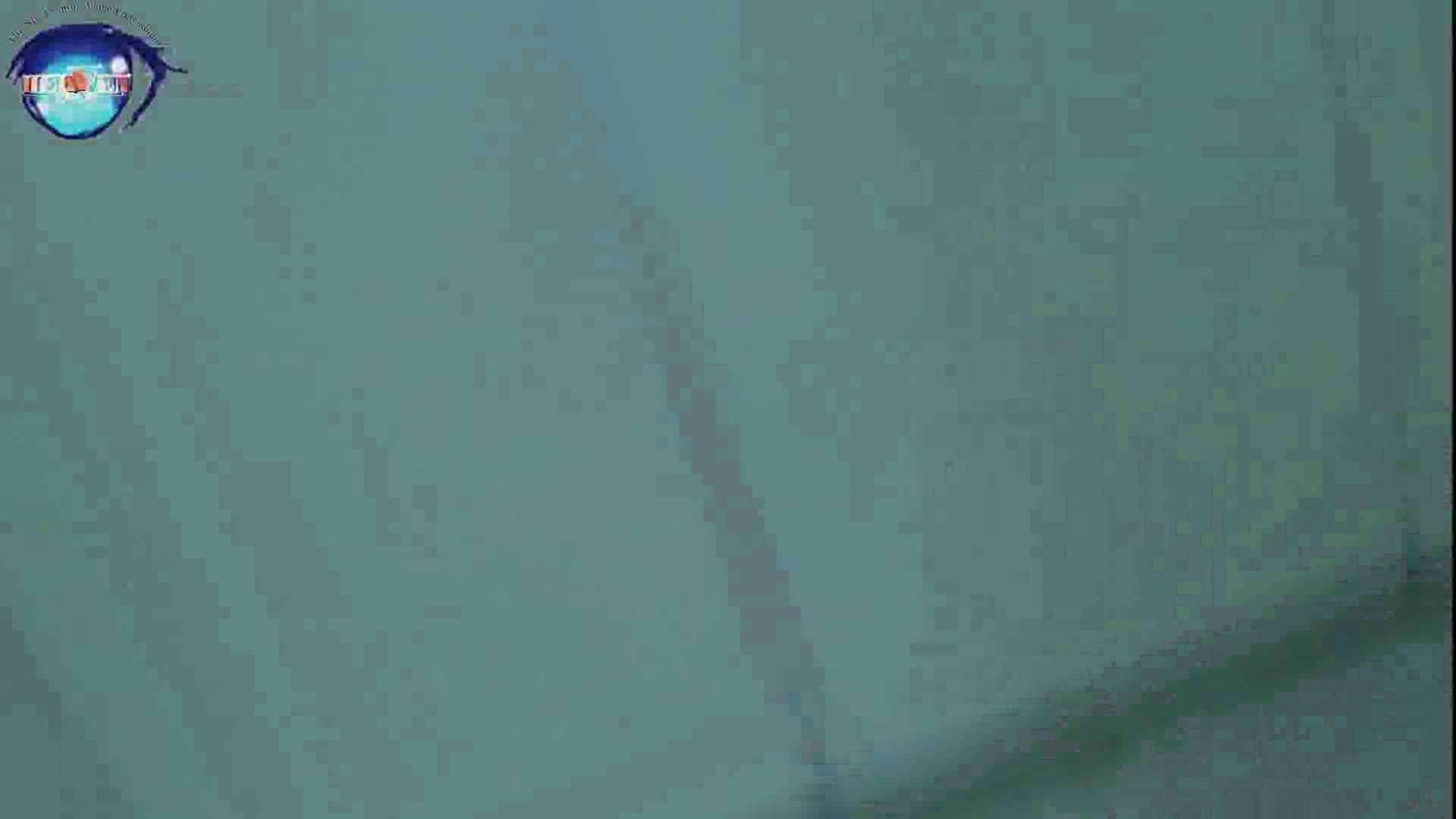 雅さんの独断と偏見で集めた動画集 厠編vol.12 盗撮特集   おまんこ  72画像 42