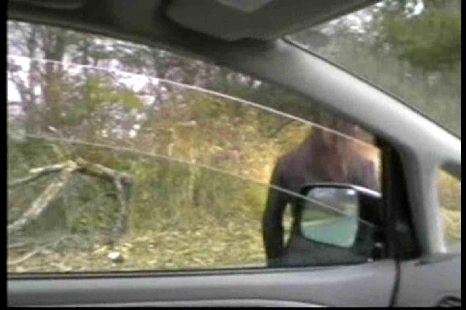 美熟女の野外露出プレイ2 魅力   0  85画像 11